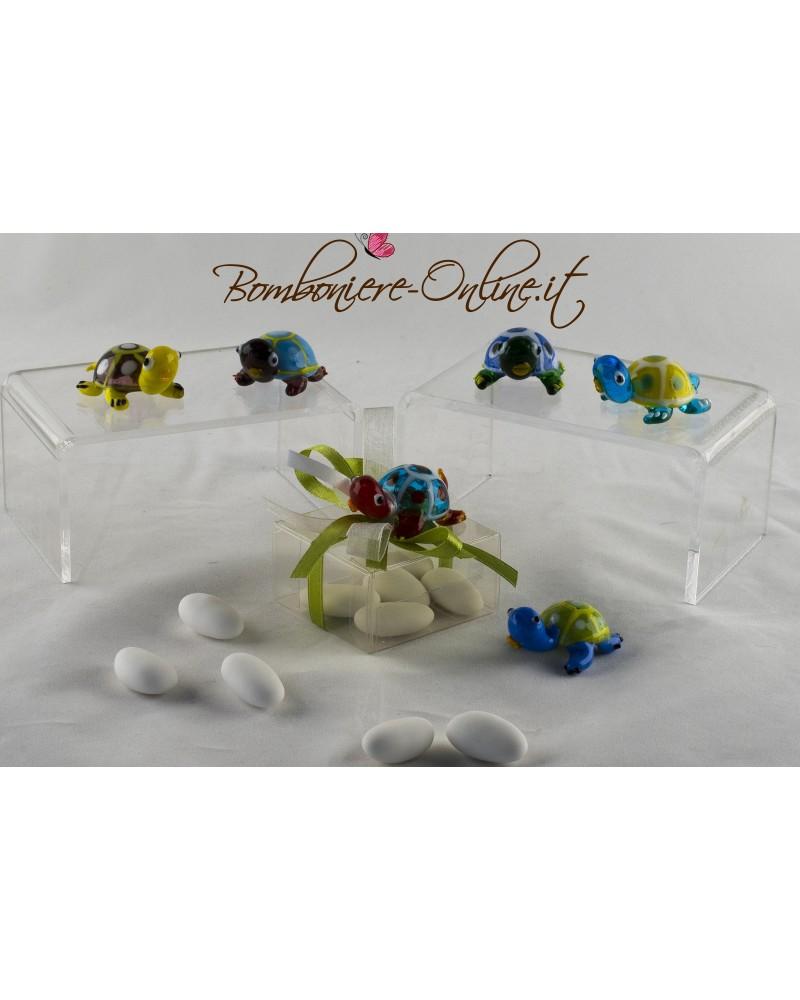 Box con tartaruga vetro